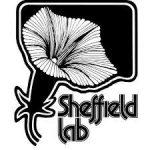 代理發燒錄音品牌 Sheffield Lab / Town Hall